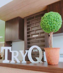 TryQの画像